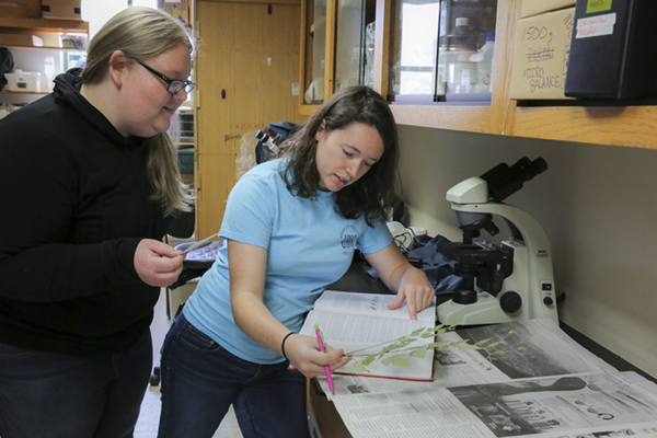 University of North Georgia (UNG) seniors Samantha Shea, left, and Katie Horton work together on creating a herbarium at UNG. A herbarium is a core collection of dried plant specimens mounted, labeled and filed in an organized way. Horton is tasked with organizing and identifying the plants.