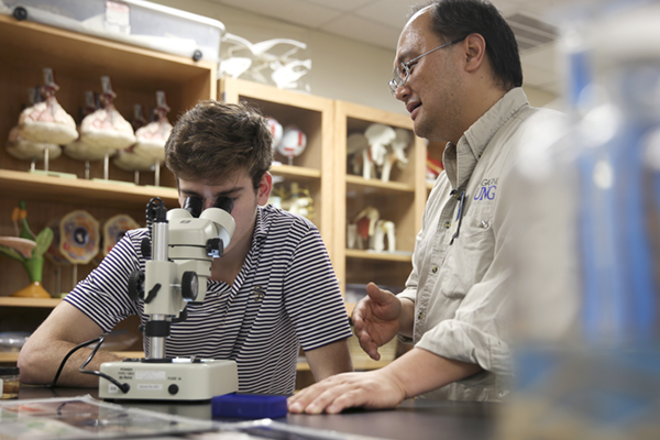 Biology professor researches mealworms as food source