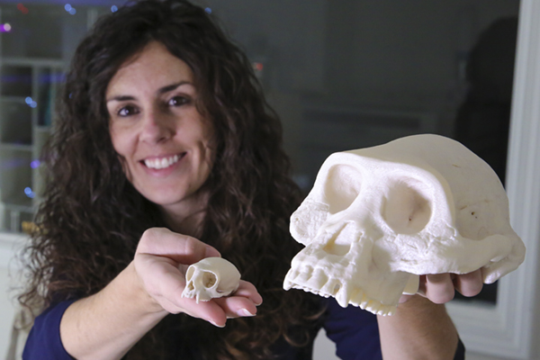 "Dr. Jessica ""Jess"" Hartel, lecturer of biology at the University of North Georgia, reached out to the MakerBot Innovation Center and Dr. Jon Mehlferber, professor of visual arts at UNG, to help create 3D replicas of primate skulls for a special-topics class."