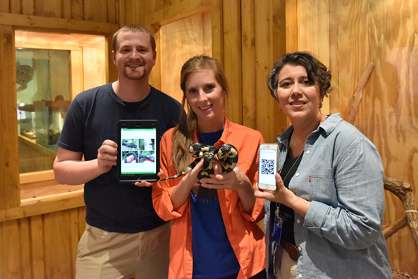 Biology and IESA faculty members create a snake app