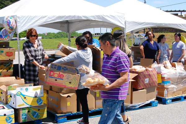 About 64 households totaling 252 individuals received groceries from the University of North Georgia's Food Pantry during a roadside-style market event in April on the edge of UNG's Gainesville Campus. Organizers deemed the event successful and plans to have mobile food pantry events in the fall 2019 semester.