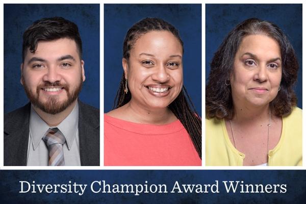 Three win Diversity Champion Awards