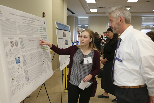 Undergraduate research gains more interest for annual statewide conference