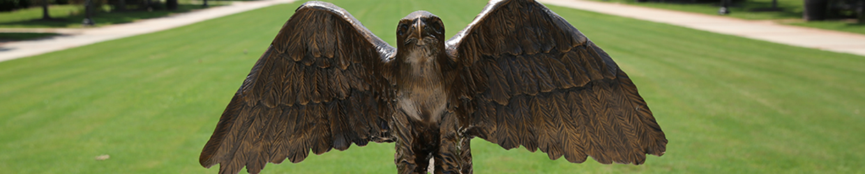 Apply now to make Nigel the Nighthawk your college mascot!